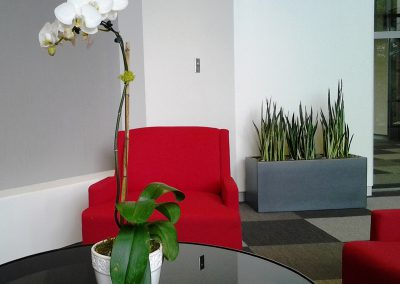 reception-area-plants-wi
