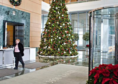 Red, Green, Silver, & Black Christmas Tree in Lobby