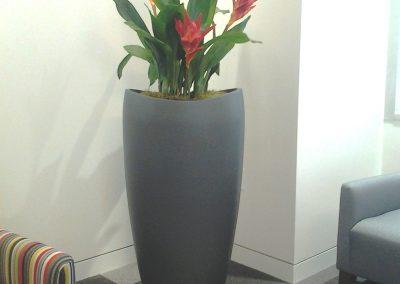 Artificial Bromeliads