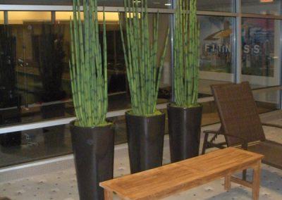 Artificial-plants-1