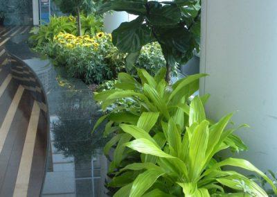 Atrium one