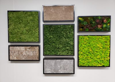 BioMontage wall panels- Phillip's reception