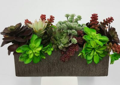 Chicago Artificial Succulents