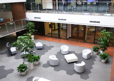 Common Area in Lobby