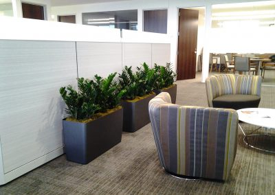 Corporate Office Lounge Area