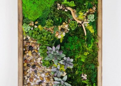 Framed preserved moss art