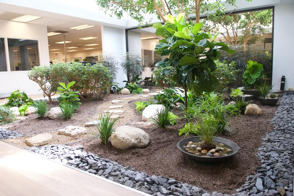 Newly improved atrium brings tranquility to the office!