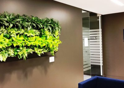 Green Wall Planter Real Estate office