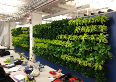 Green wall Merchandise Mart