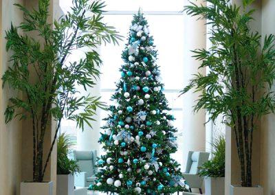 Hospital Lobby Tree