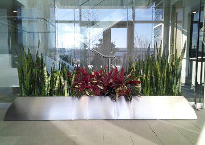 Lobby Planter