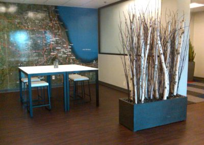 Natural birch poles and twig in planter