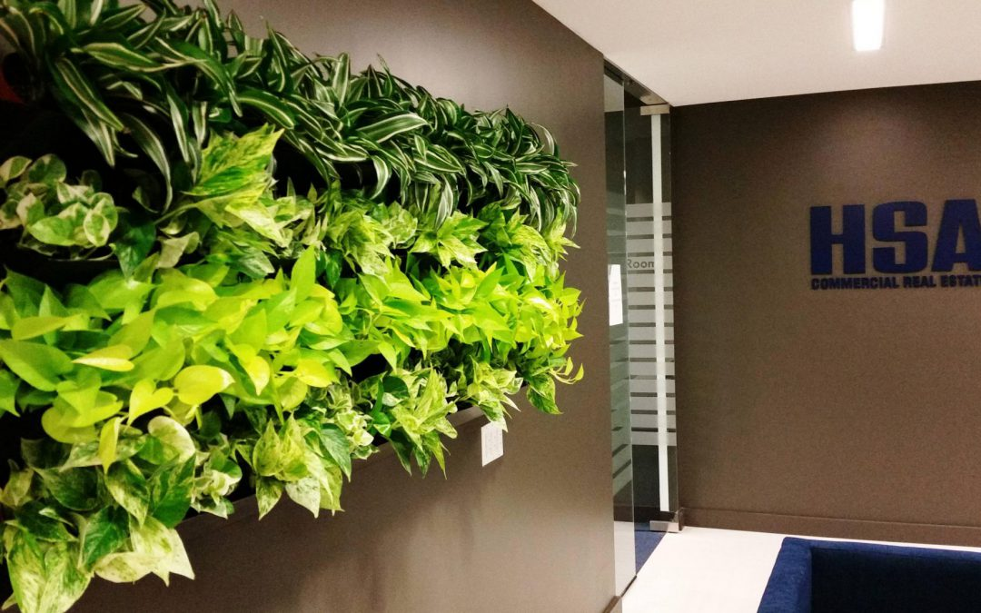 Green Walls, Moss Walls, Beautiful Art, Oh My!