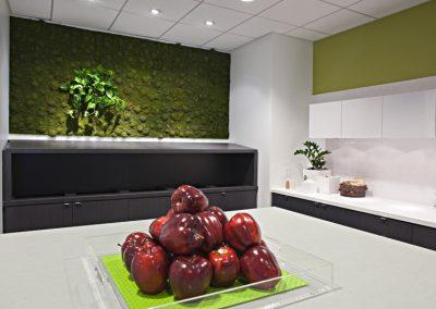 Redbox- moss wall