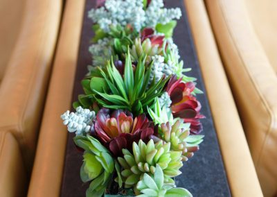 Suburban Artificial Succulents