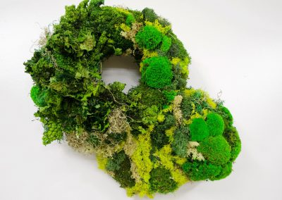 Unframed preserved moss art