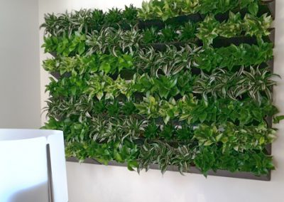 city-living-green-wall