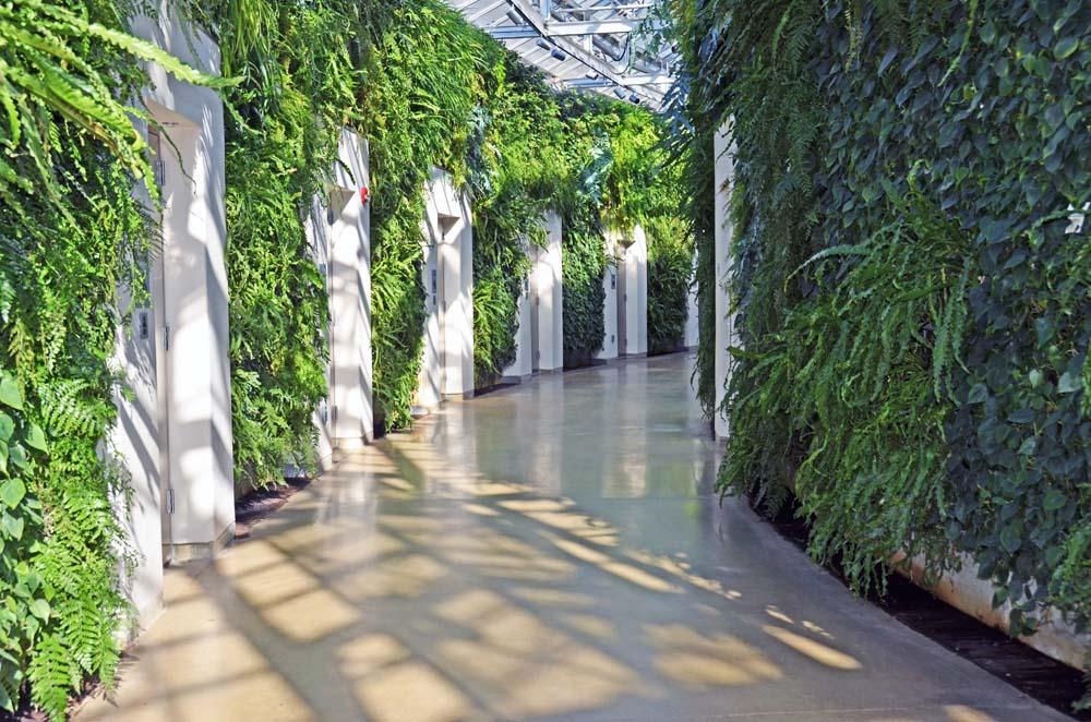 Interior Plantscape Symposium 2016