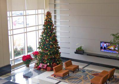 holiday-tree-in-lobby