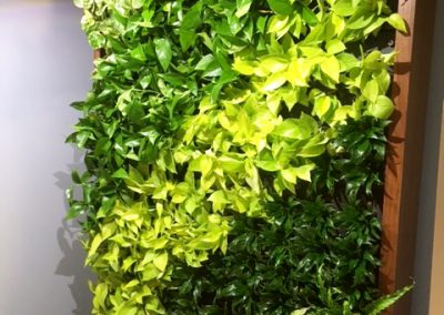 suburban-office-green-wall