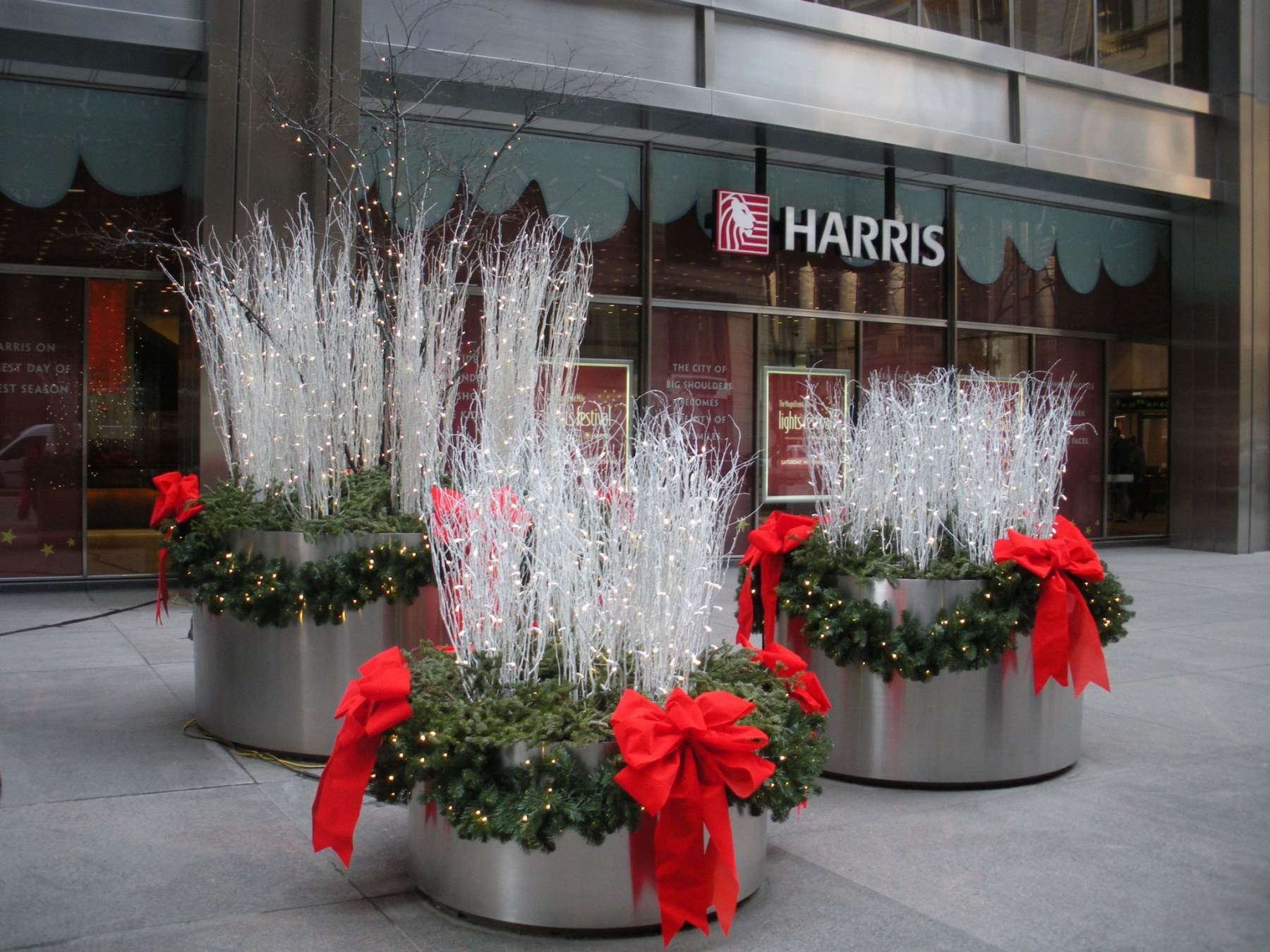 Office Plant Services And Plant Rentals Phillip 39 S Interior Plants Displays Chicago Il