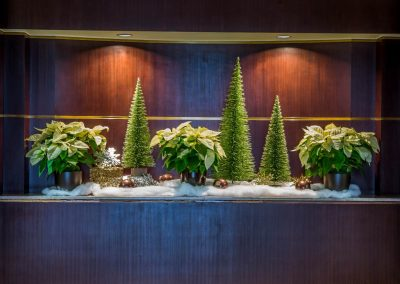 Ivory, Green, & Brown Winter Display