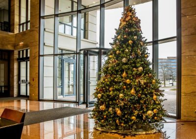 Gold & Brown Christmas Tree in Lobby